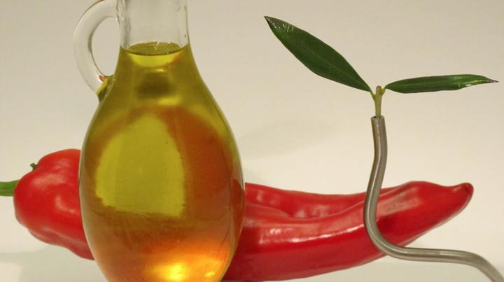 5 razones incluir aceite oliva virgen extra platos club aove
